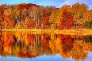 сочинение по теме золотая осень в каре